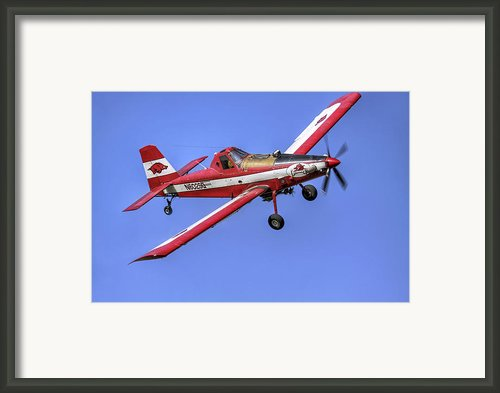 Arkansas Razorbacks Air Tractor Framed Print By Jason Politte