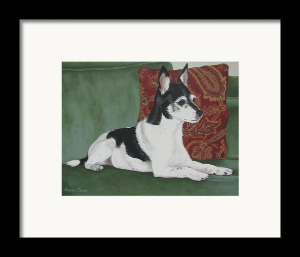 Ashley On Her Sofa Framed Print By Sandra Chase