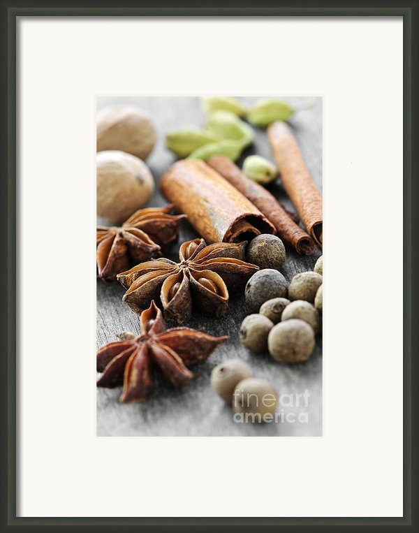 Assorted Spices Framed Print By Elena Elisseeva