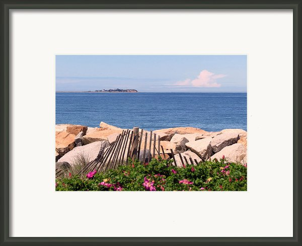At The Beach Framed Print By Janice Drew