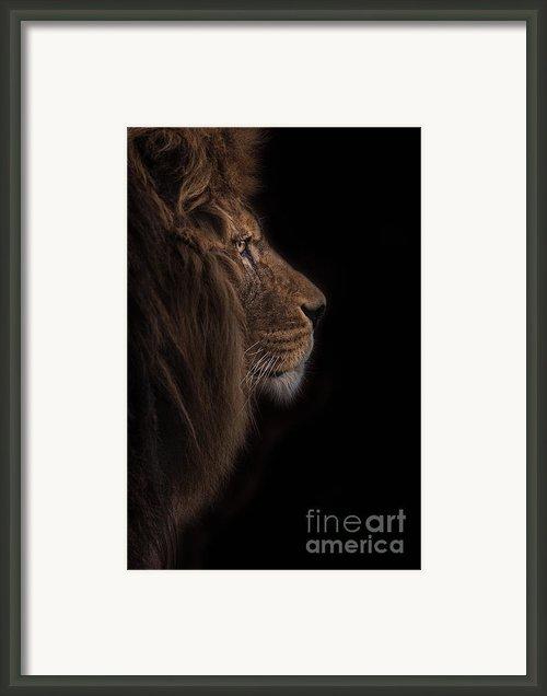 Atlas Burdened No More Framed Print By Ashley Vincent