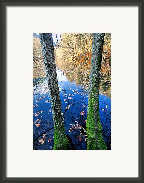Autumn - 7 Framed Print By Okan Yilmaz