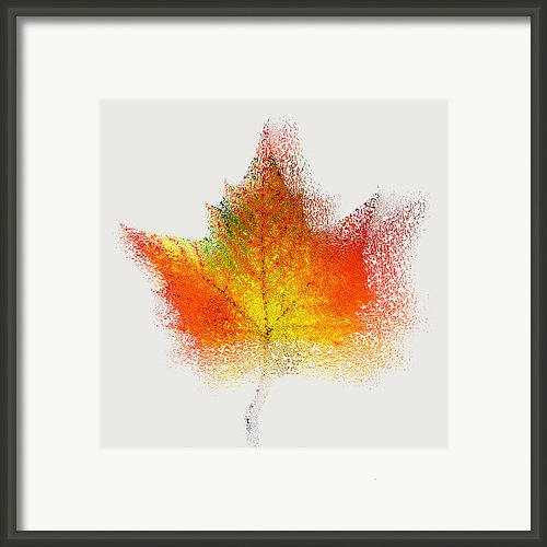 Autumn Abstract - Colorful Orange Green Yellow Nature Fine Art Photograph - Digital Painting Framed Print By Artecco Fine Art Photography - Photograph By Nadja Drieling