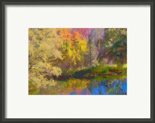 Autumn Beside The Pond Framed Print By Don Schwartz