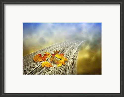 Autumn Bridge Framed Print By Veikko Suikkanen