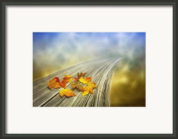 Autumn Bridge Framed Print By Veikko Suikkanen