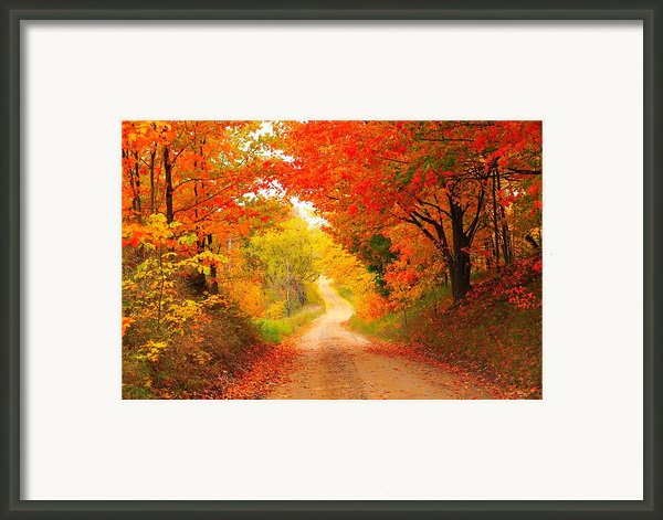 Autumn Cameo 2 Framed Print By Terri Gostola