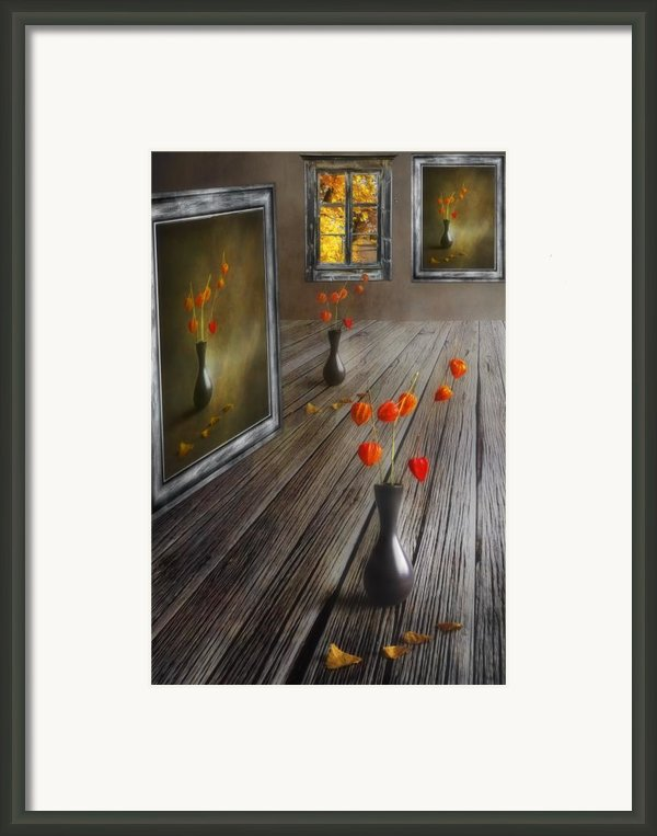 Autumn Colours Framed Print By Veikko Suikkanen
