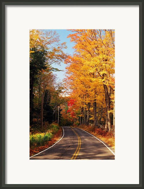 Autumn Country Road Framed Print By Joann Vitali