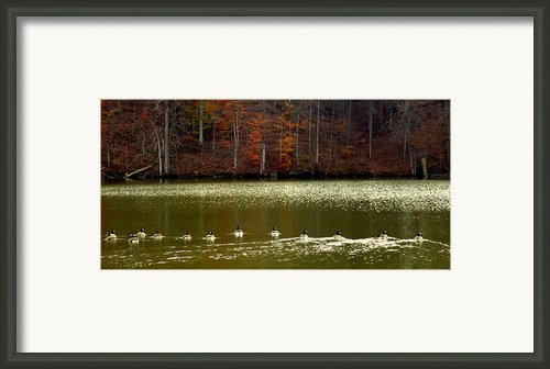 Autumn Cove Framed Print By Karen Wiles