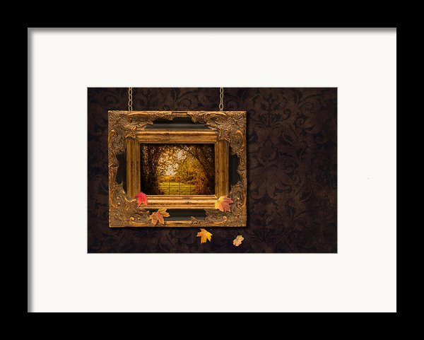 Autumn Frame Framed Print By Amanda And Christopher Elwell