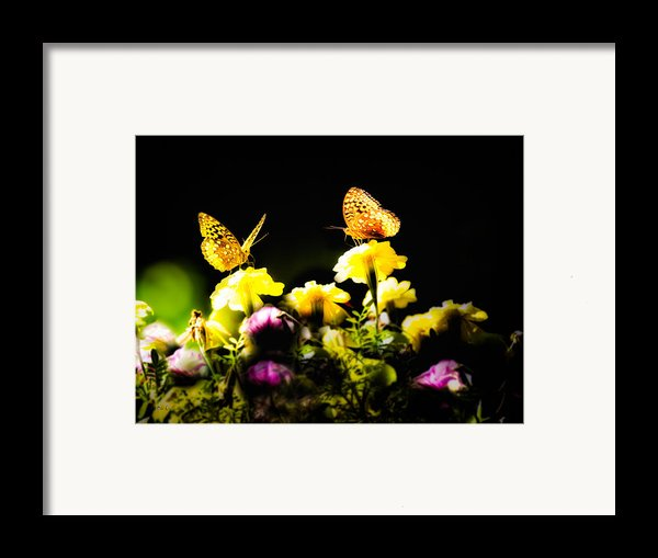 Autumn Is When We First Met Framed Print By Bob Orsillo