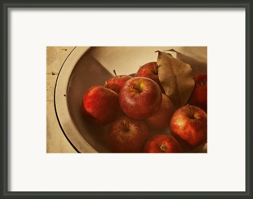 Autumn Red Framed Print By Amy Weiss