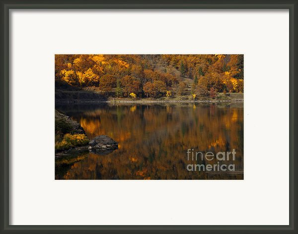Autumn Reflections Framed Print By Mike  Dawson