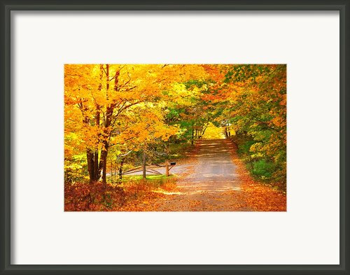 Autumn Road Home Framed Print By Terri Gostola