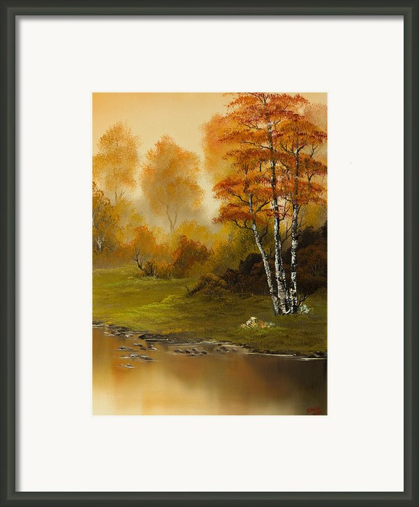 Autumn Splendor Framed Print By C Steele