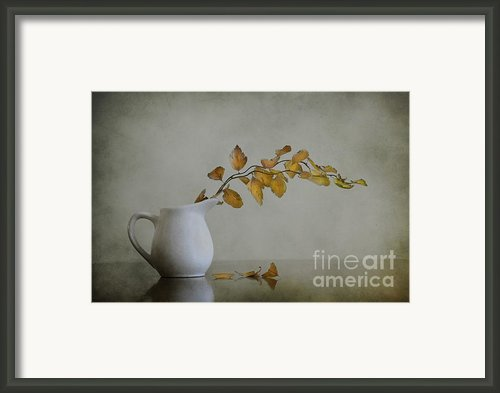 Autumn Still Life Framed Print By Diana Kraleva