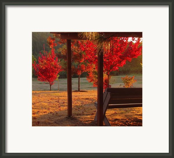 Autumn Sunset Framed Print By Katie Wing Vigil