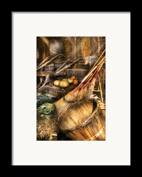 Autumn - This Years Harvest Framed Print By Mike Savad