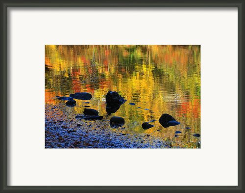 Autumns Rainbow Framed Print By Karol  Livote