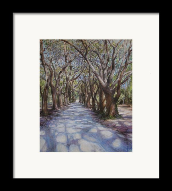 Avenue Of The Oaks Framed Print By Henry David Potwin