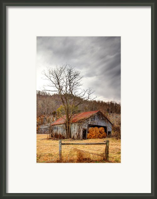 Awaiting Spring Framed Print By David  Jones