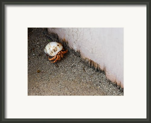 Back Home Framed Print By    Michael Glenn