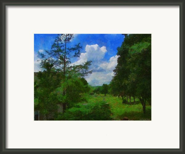Back Yard View Framed Print By Jeff Kolker