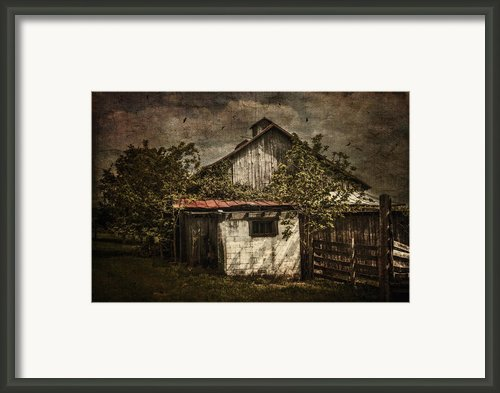 Barn In Morning Light Framed Print By Kathy Jennings