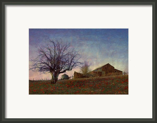 Barn On The Hill - Big Sky Framed Print By R Christopher Vest