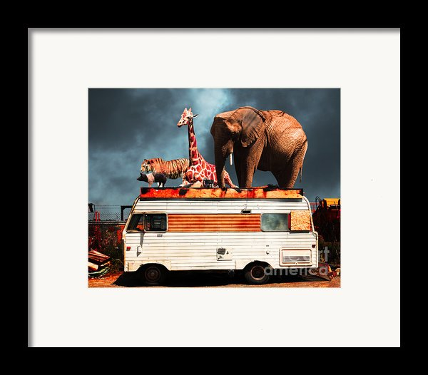 Barnum And Bailey Goes On A Road Trip 5d22705 Framed Print By Wingsdomain Art And Photography
