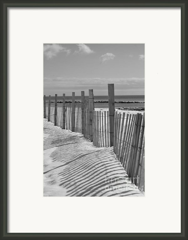Beach Snow  Framed Print By Catherine Reusch  Daley