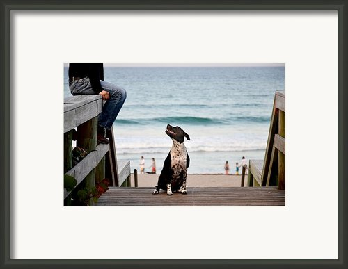 Beach Stairway Framed Print By Laura  Fasulo