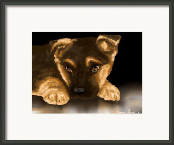 Beautiful Puppy Framed Print By Veronica Minozzi