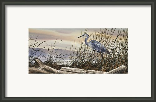 Beauty Along The Shore Framed Print By James Williamson