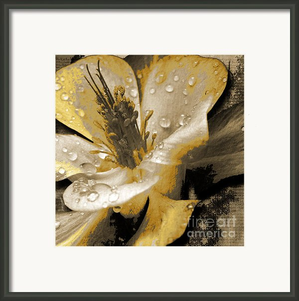 Beauty Ii Framed Print By Yanni Theodorou