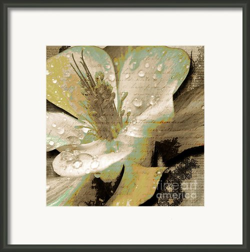 Beauty Vii Framed Print By Yanni Theodorou