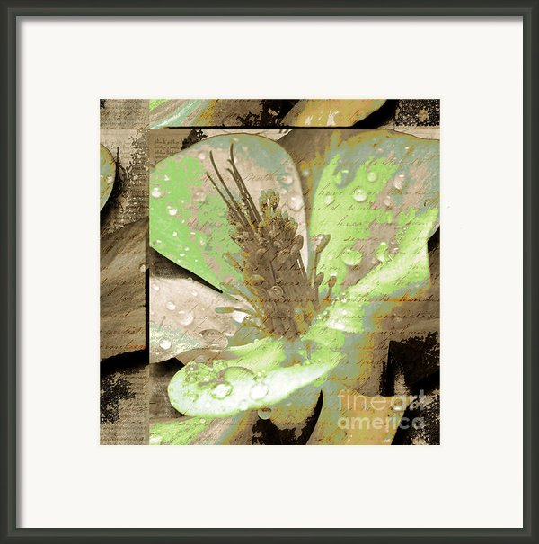 Beauty X Framed Print By Yanni Theodorou