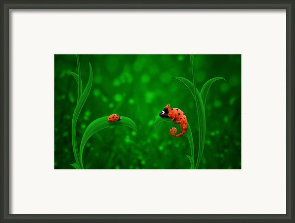 Beetle Chameleon Framed Print By Sanely Great