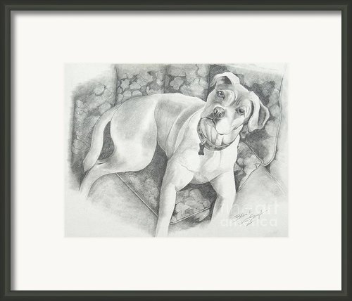 Bella My Pup Framed Print By Joette Snyder