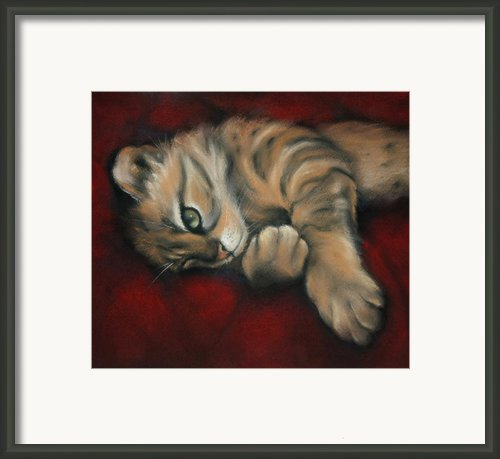 Bengal Dreaming Framed Print By Cynthia House