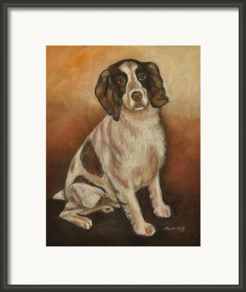 Benson - English Springer Spaniel Framed Print By Heather Kertzer