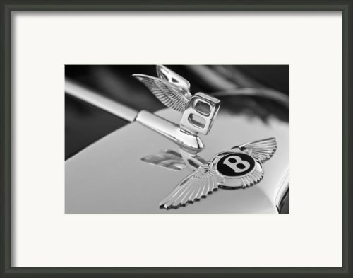 Bentley Hood Ornament 5 Framed Print By Jill Reger