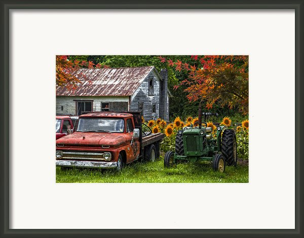 Best Friends Framed Print By Debra And Dave Vanderlaan