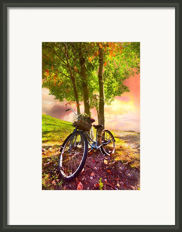 Bicycle Under The Tree Framed Print By Debra And Dave Vanderlaan