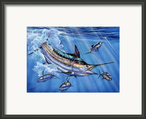 Big Blue And Tuna Framed Print By Terry Fox