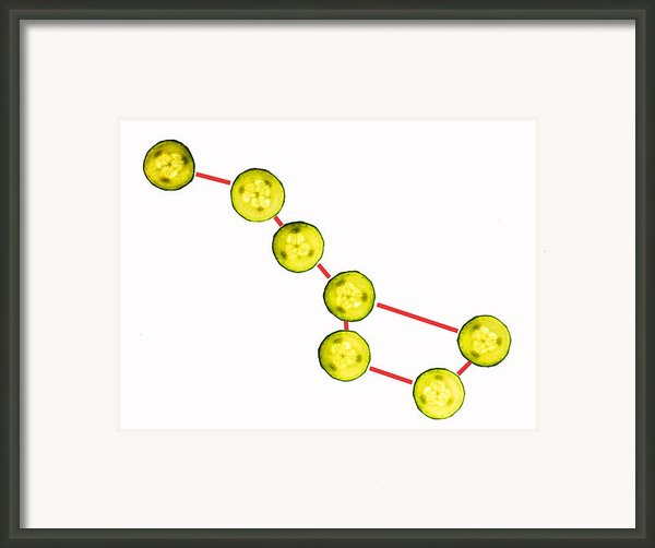 Big Dipper Composed By Cucumber Slices Food Art Framed Print By Paul Ge