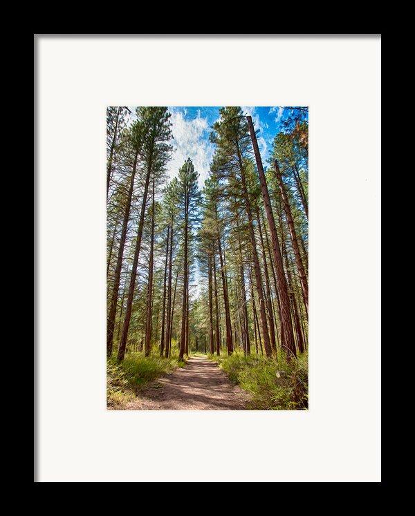 Big Valley Views Mvsta Trail Framed Print By Omaste Witkowski