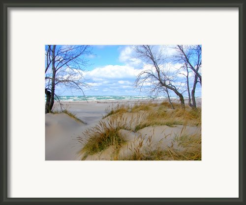 Big Waves On Lake Michigan Framed Print By Michelle Calkins