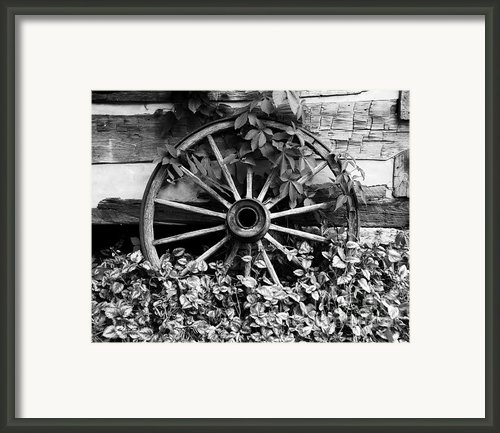 Big Wheel Bw Framed Print By Mel Steinhauer